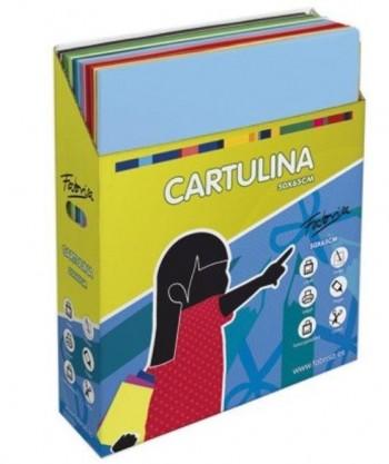 CAJA SURTIDA CARTULINAS 50X60 500 UNIDADES